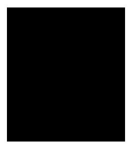 SAKURA SPECIAL SHOP